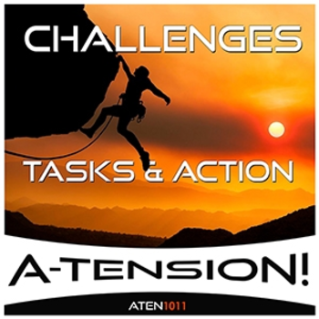 Challenges Tasks & Action