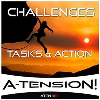 Challenges Tasks & Action