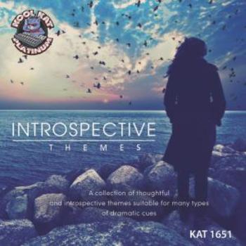 1651 INTROSPECTIVE THEMES