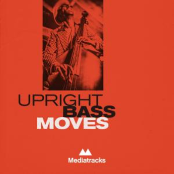 Upright Bass Moves